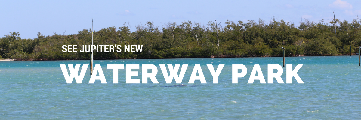Waterway Park in Jupiter, Florida